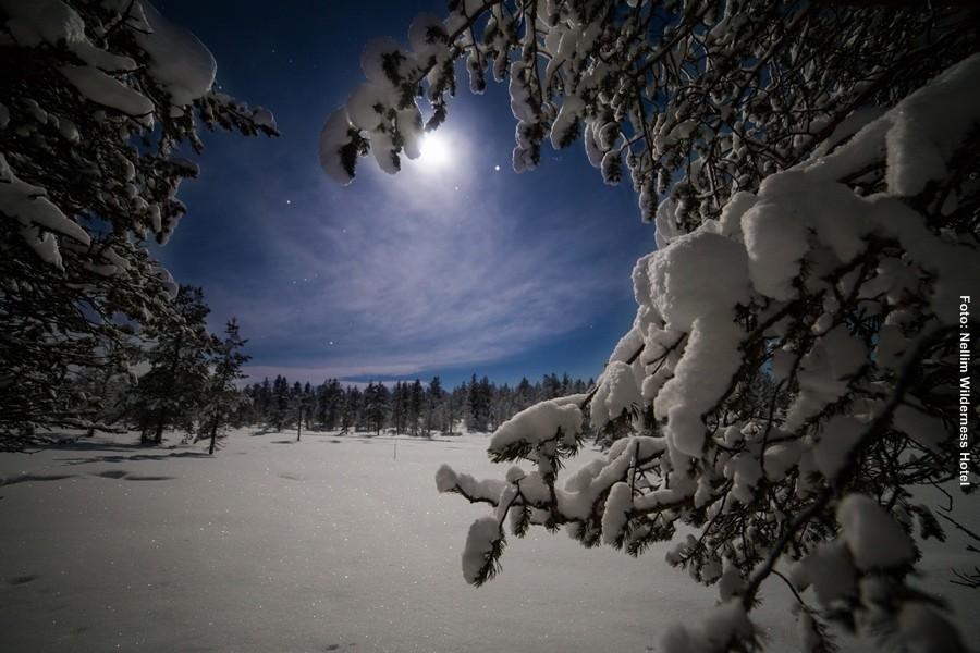 Winterreisen-Finnland