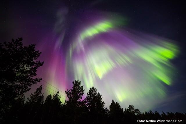 Nordlichter-Reise-Lappland