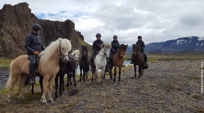 Island Familienreittour