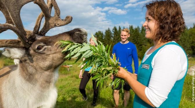 Finnland Urlaub mit Kanu und Fahrrad