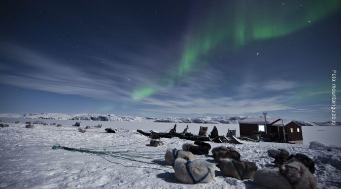 Groenland Hundeschlittenurlaub