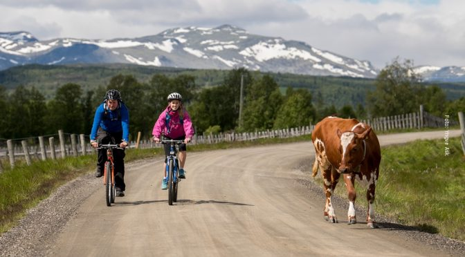 Norwegen Fahrradurlaub