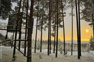 Schweden Winter Reisen - Baumhotel
