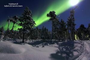 Nordlichterreisen Finnland
