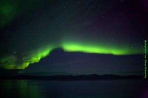 Arktisreisen Polarlicht