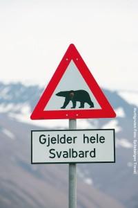 Polarreisen