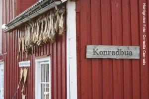 Norwegenreisen_Lofoten