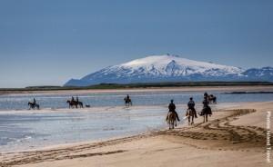 Island_Reiten_Urlaub