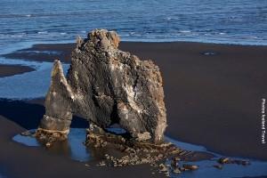Islandreisen_Nordisland_Hvitserkur1