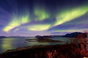 Norwegen Nordlichter Wale