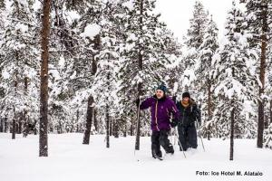 Eishotel-Schweden, Skilanglauf Tour