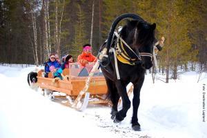 Lapland Huetten Pferdeschlittenfahren