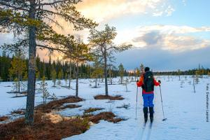 Lapland Huetten Skiwandern