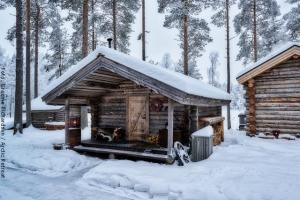Exklusive Blockhütten in Lappland