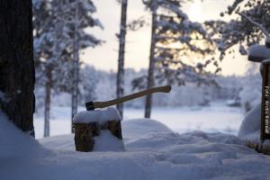 Holzfällen vor Blockhütte