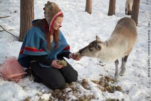 Jokkmokk Sami Kultur Tour