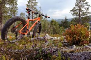 Sommer Abenteuerurlaub Finnland Fatbike