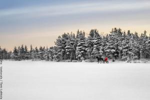 Weihnachten in Lappland - Schneelandschaft