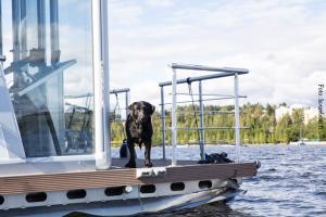 Finnland_Hausboot_Urlaub 4