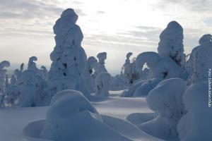 Finnland_Winterreisen