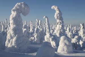 Winterreise Finnland-Lappland