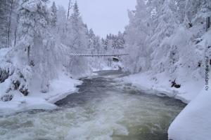 Winterreisen Oulanka