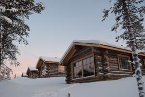 Hotel Muotka Lappland Lodge - Panorama Blockhütten