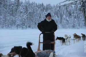 Husky Safari Winter Lappland