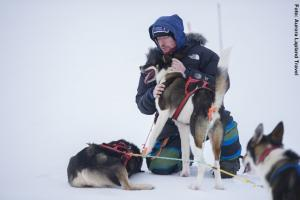 Huskytour Lappland Utsjoki