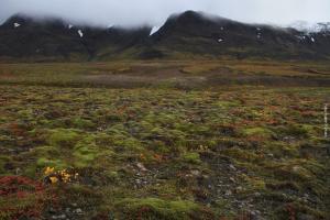 Island Hochlandroute Kjölur