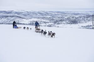 Winterreise Lappland Utsjoki