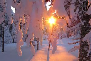 Lapplandreise Winter in Äkäslompolo
