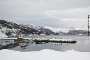 Norwegen Winter am Fjord