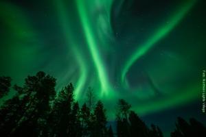 Polarlichter-in-Lappland NLV