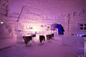 Eisbar im Schneehotel