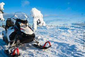 Schneemobil Tour Lappland