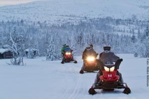 Schneemobil Safari Schweden - Landschaft