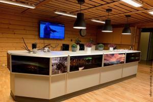Winterreise Schwedens Norden - Aktivitätencenter